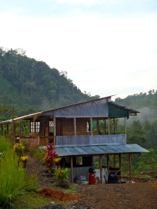 The 'Bamboo House'
