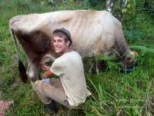 chris cow